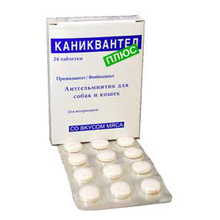 Каниквантел Плюс//таблетки со вкусом мяса 24 таб.