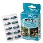 Кондиционер в капсулах Tetra Bactozym, необходим для немедленного обеспечения биологической активности в фильтре и аквариуме (10 капсул)