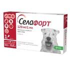 Селафорт для собак весом от 10,1 - 20 кг раствор для наруж. применения 1х120мг/1мл