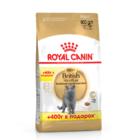 Royal Canin British Shorthair Adult 400+400 гр./Роял канин сухой корм для взрослых кошек британской породы