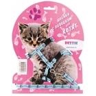 Dezzie 5609541//Деззи комплект для котят : Шлейка+поводок
