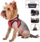 Дарэлл/Шлейка для собак Кай S 23-28 см./035102