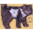 Попона послеоперационная для кошек(двухслойные)