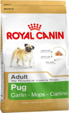 Royal Canin Pug Adult//сухой корм для собак породы мопс от 10 месяцев 500 г + 500 г