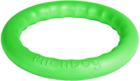 PitchDog 20 /Игровое кольцо для аппортировки d 20 зеленое