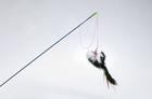 Beeztees/Игрушка д/кошек Удочка с меховой мышкой и перьями малая 46см/430267