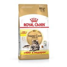 Royal Canin Maine Coon Adult 400+400 гр./Роял канин сухой корм для взрослых кошек породы мейн-кун
