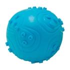 HOMEPET Игрушка для собак мяч с пищалкой 6,3 см. (70102)
