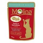 Molina 100 гр./Молина Влажный корм (пауч) для кошек Тунец и цыпленок в желе