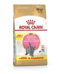 Royal Canin British Shorthair Kitten 400+400 гр./Роял канин сухой корм для британских короткошерстных котят в возрасте до 12 месяцев