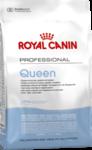 Royal Canin Queen 34 10 кг./Роял канин сухой корм для кошек беременных и кормящих
