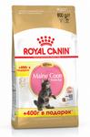 Royal Canin Maine Coon Kitten 400+400 гр./Роял канин сухой корм для котят породы мейн-кун в возрасте до 15 месяцев