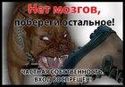 "Дарэлл 0041/Табличка ""Нет мозгов, побереги остальное!"""