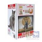 Royal Canin British Shorthair Adult 2+ паучи 4 шт.кг./Роял канин сухой корм для взрослых кошек британской породы