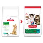 Hills Science Plan Kitten Healthy Development Tuna 300гр./Хиллс сухой корм для котят с тунцом