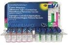 Вангард Plus 5 L4 CV (DHPPiL4 CV) № 25/Вакцина состоит из двух отдельно расфасованных компонентов