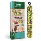 TRIOL/ Лакомство для грызунов для грызунов с овощами (уп.2шт.), 50 гр./40161014/