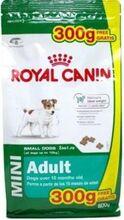 Royal Canin Mini Adult 500 г + 300 г/Роял канин сухой корм для собак мелких размеров с 10 месяцев до 8 лет