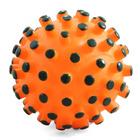 TRIOL/ Игрушка для собак Мяч-мина/12101017