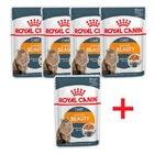 Royal Canin Intense Beauty 4+1 по 85 гр./Роял канин консервы в фольге для поддержания красоты шерсти кошек в желе